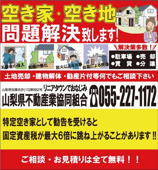 akiya-akichi2