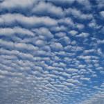 サバ巻積雲