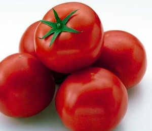 tomate[1]